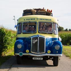 Sortie en vieux bus